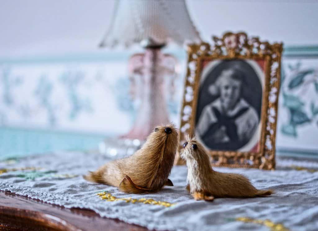 Granny's seals