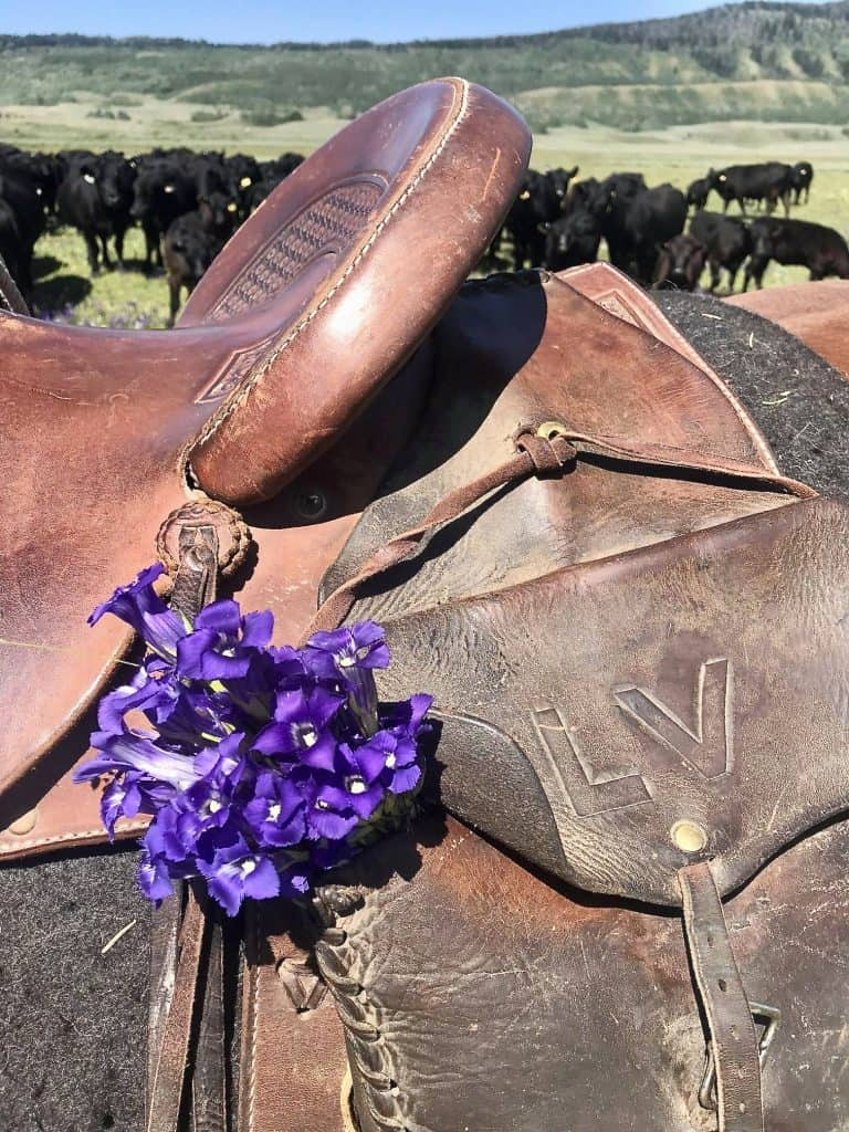 Saddle with violets