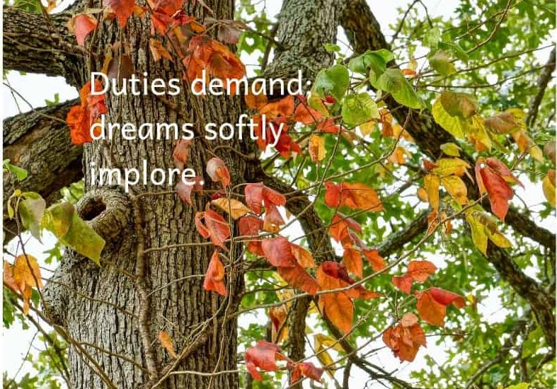 of dreams and duty