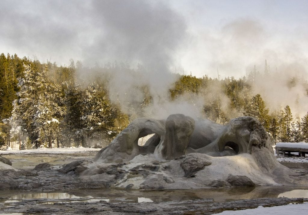 Winter in Yellowstone: Grotto geyser