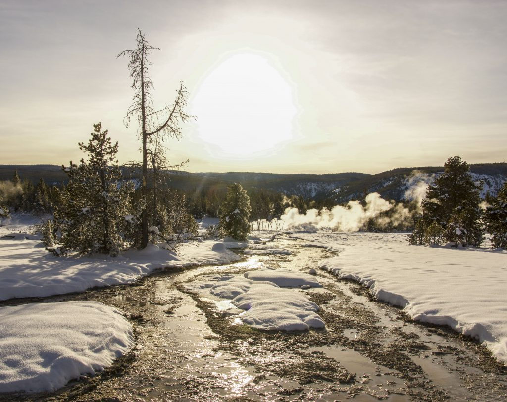 Winter in Yellowstone: sunlight on the Firehole River