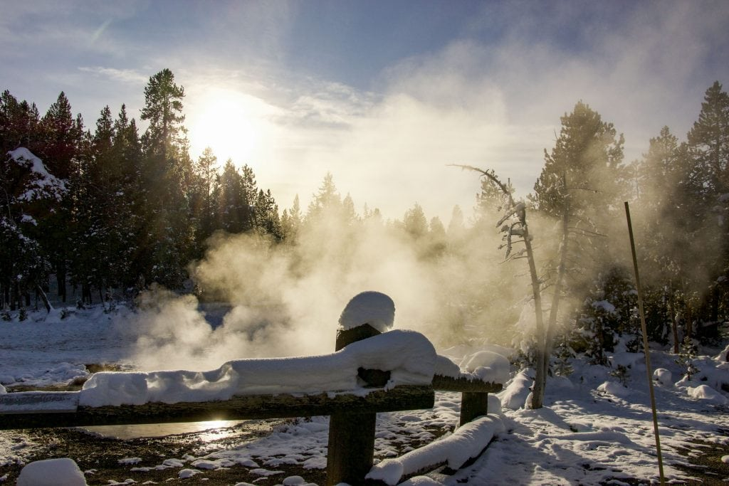 Winter in Yellowstone: sunlight through steam