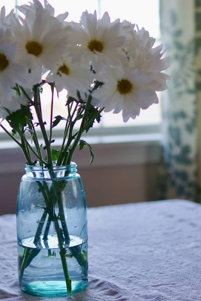 Daisies in a Vintage Jar