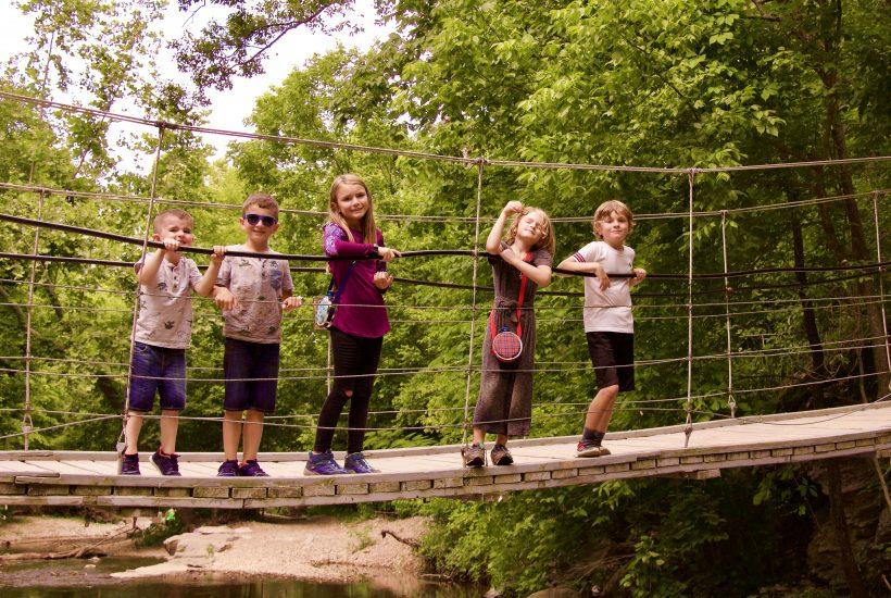 Tanyard Creek swinging bridge